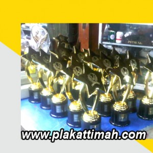trophy timah 2